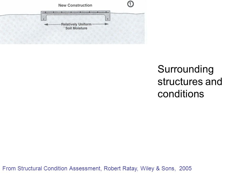 Surrounding structures and conditions