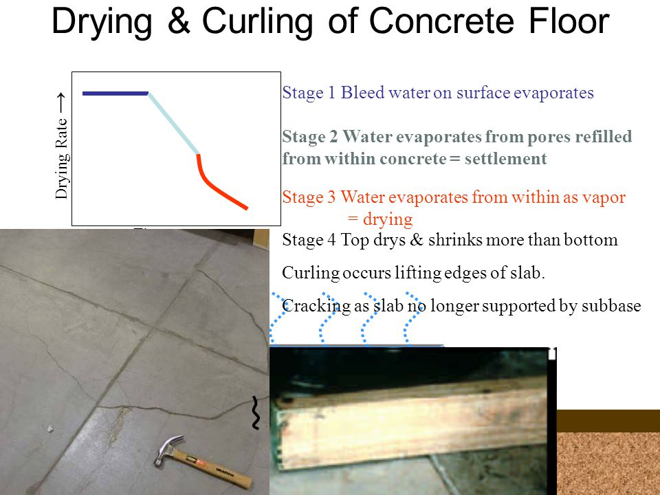 Drying & Curling of Concrete Floor