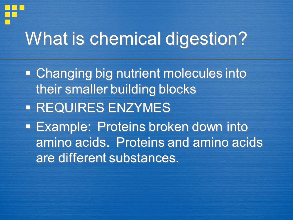 What is chemical digestion
