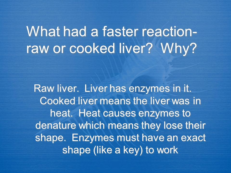 What had a faster reaction- raw or cooked liver Why