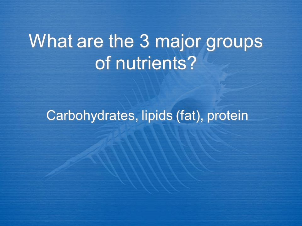 What are the 3 major groups of nutrients