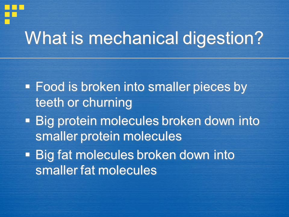 What is mechanical digestion