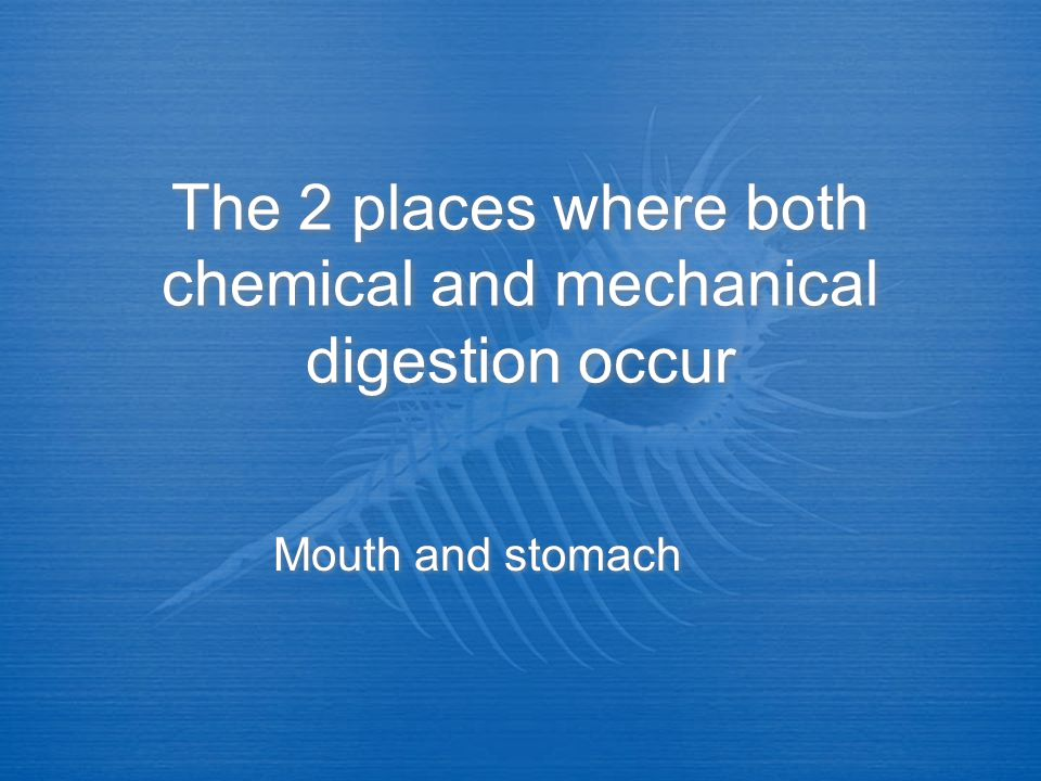 The 2 places where both chemical and mechanical digestion occur