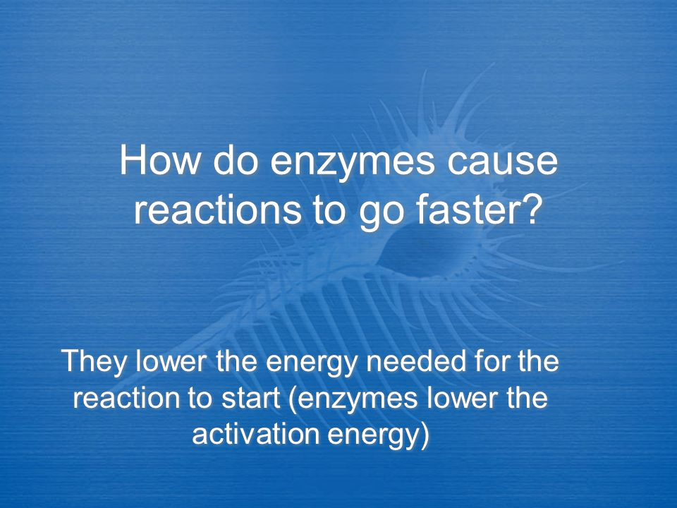 How do enzymes cause reactions to go faster