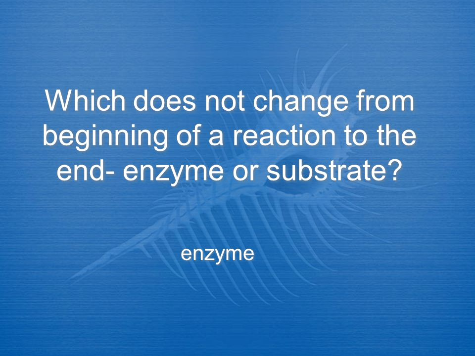 Which does not change from beginning of a reaction to the end- enzyme or substrate