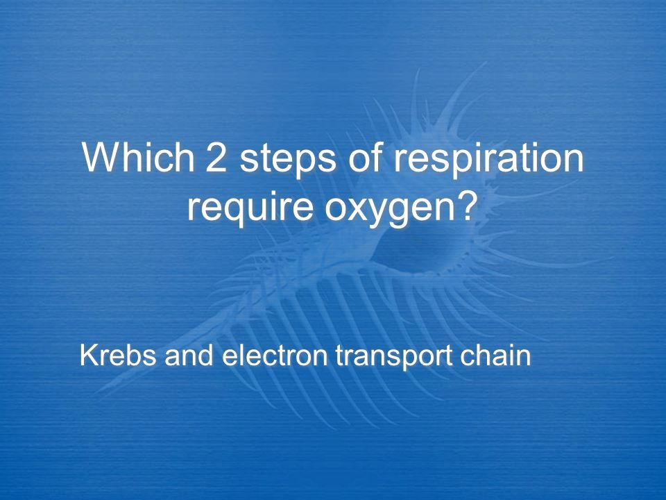 Which 2 steps of respiration require oxygen