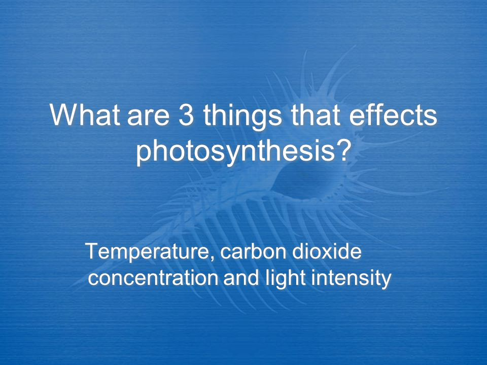 What are 3 things that effects photosynthesis
