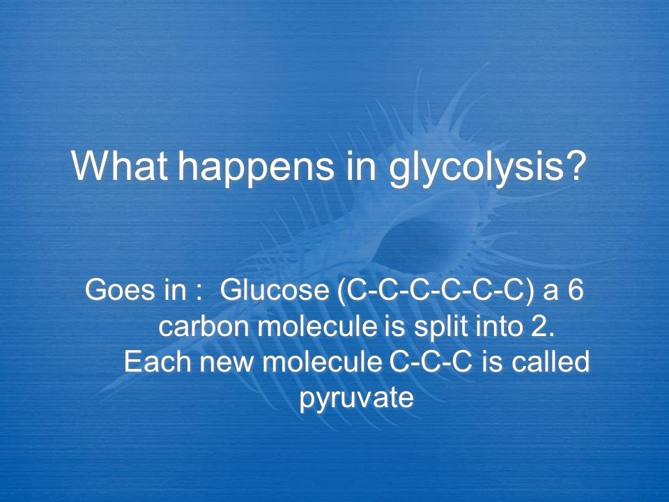 What happens in glycolysis