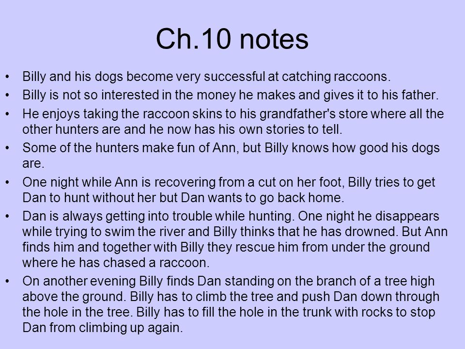 Ch.10 notes Billy and his dogs become very successful at catching raccoons.