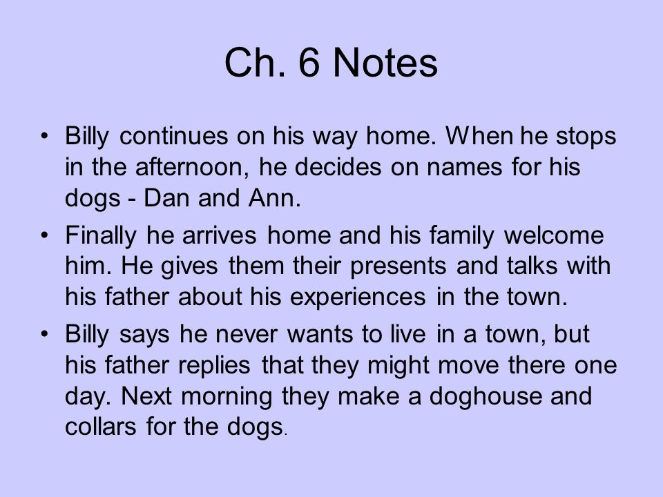 Ch. 6 Notes Billy continues on his way home. When he stops in the afternoon, he decides on names for his dogs - Dan and Ann.