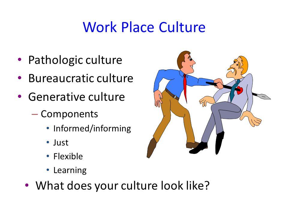 Work Place Culture Pathologic culture Bureaucratic culture
