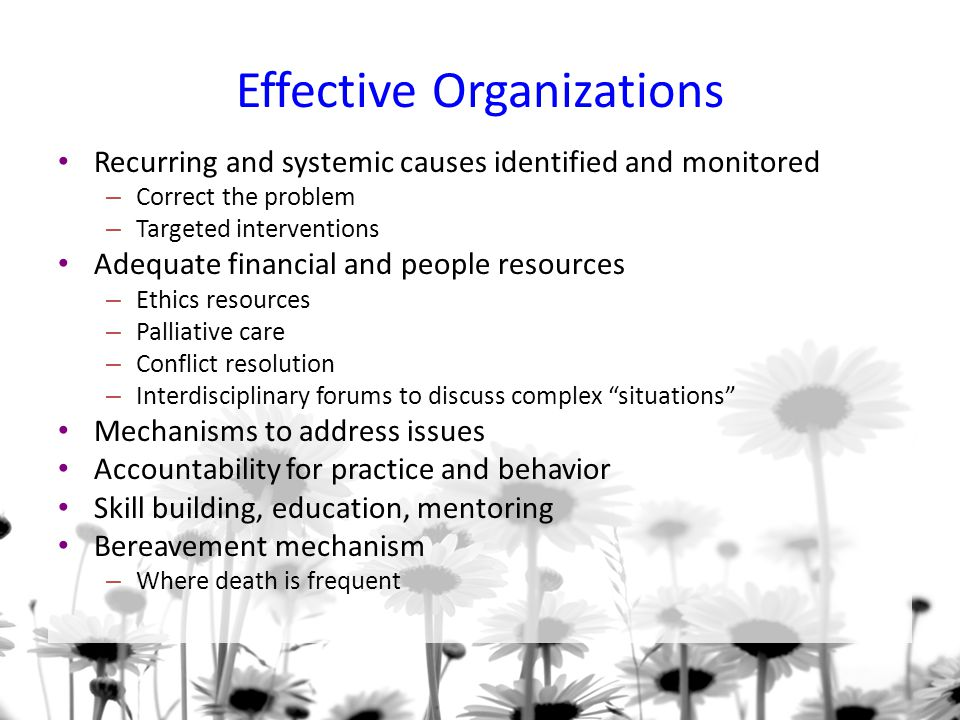 Effective Organizations