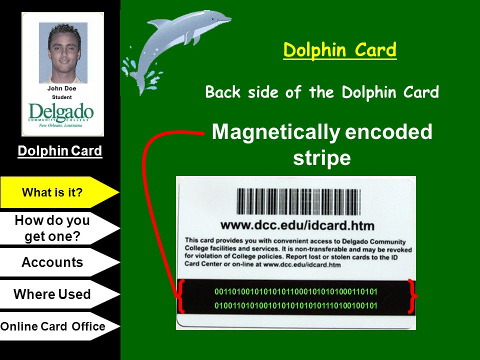 Back side of the Dolphin Card