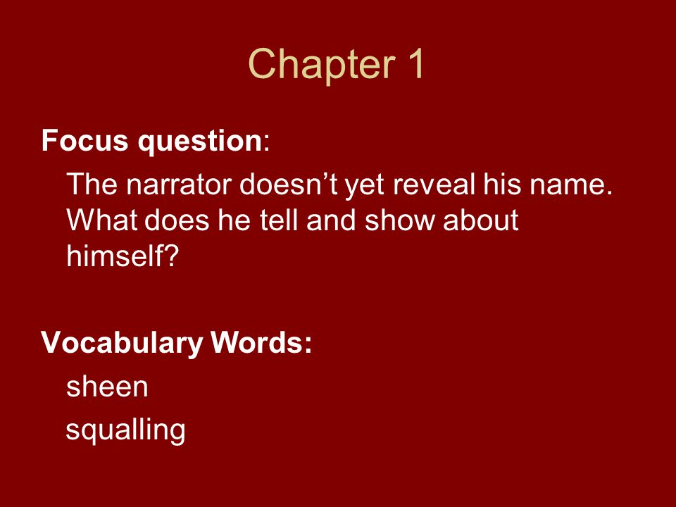 Chapter 1 Focus question:
