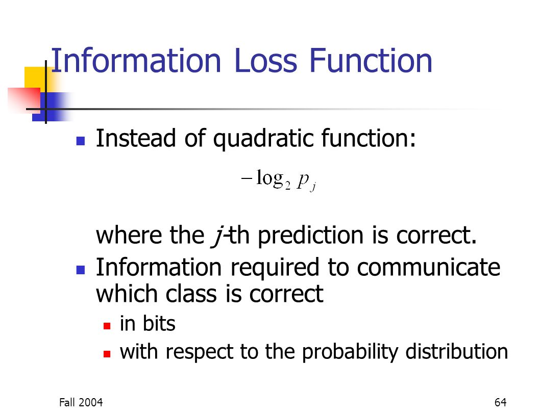 Information Loss Function