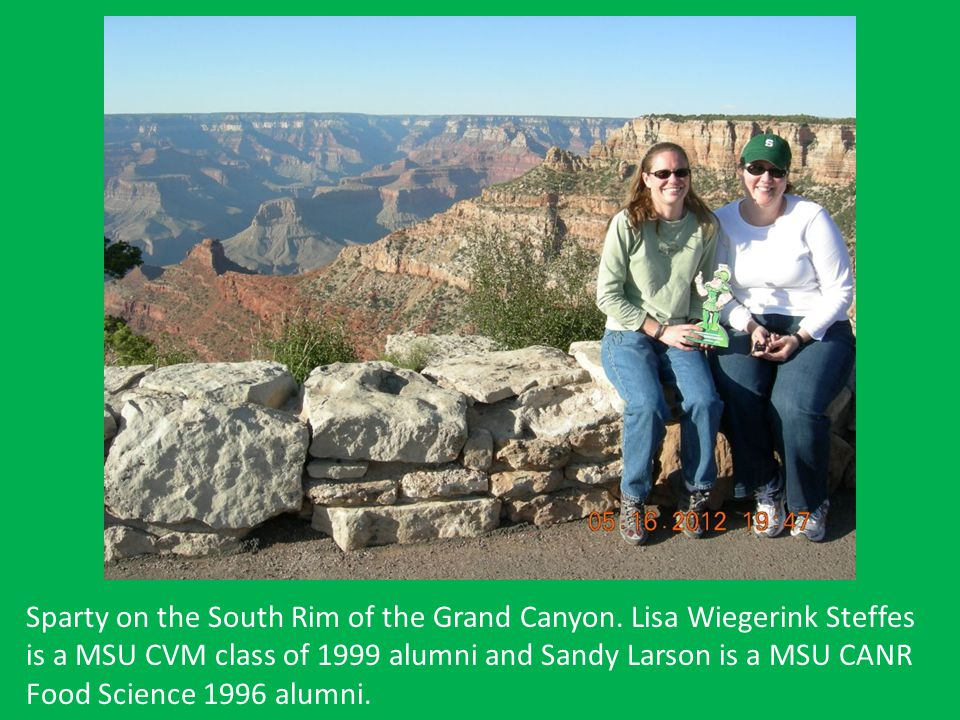 Sparty on the South Rim of the Grand Canyon