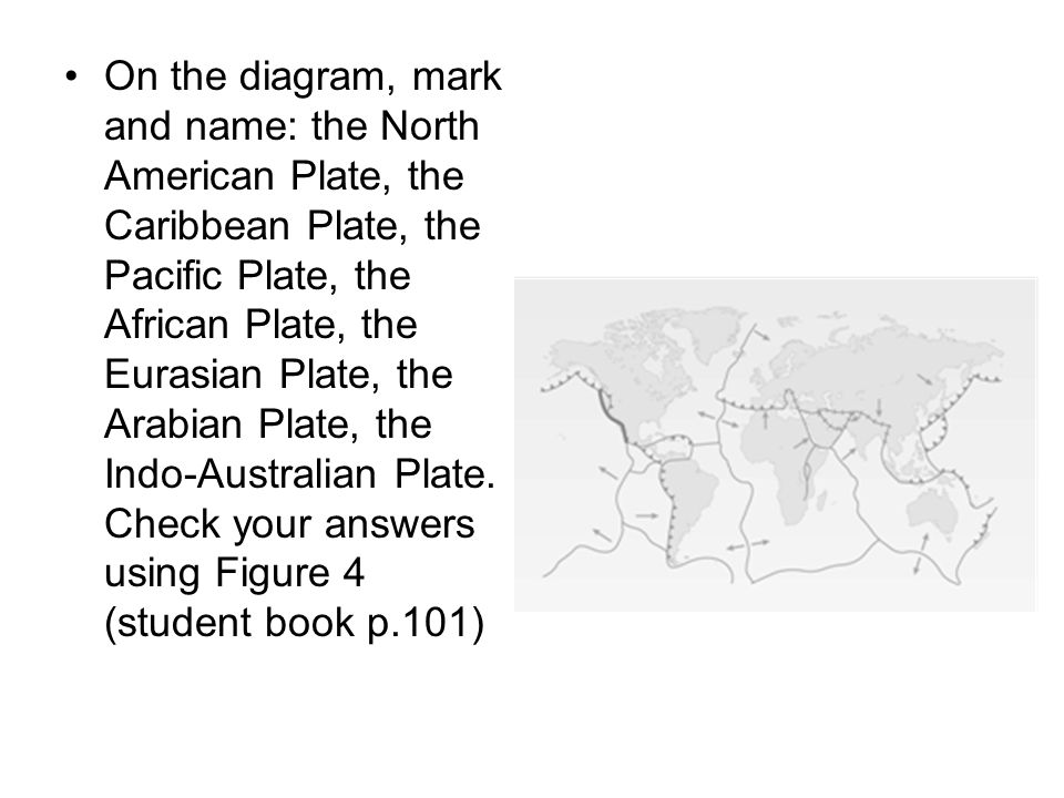 On the diagram, mark and name: the North American Plate, the Caribbean Plate, the Pacific Plate, the African Plate, the Eurasian Plate, the Arabian Plate, the Indo-Australian Plate.