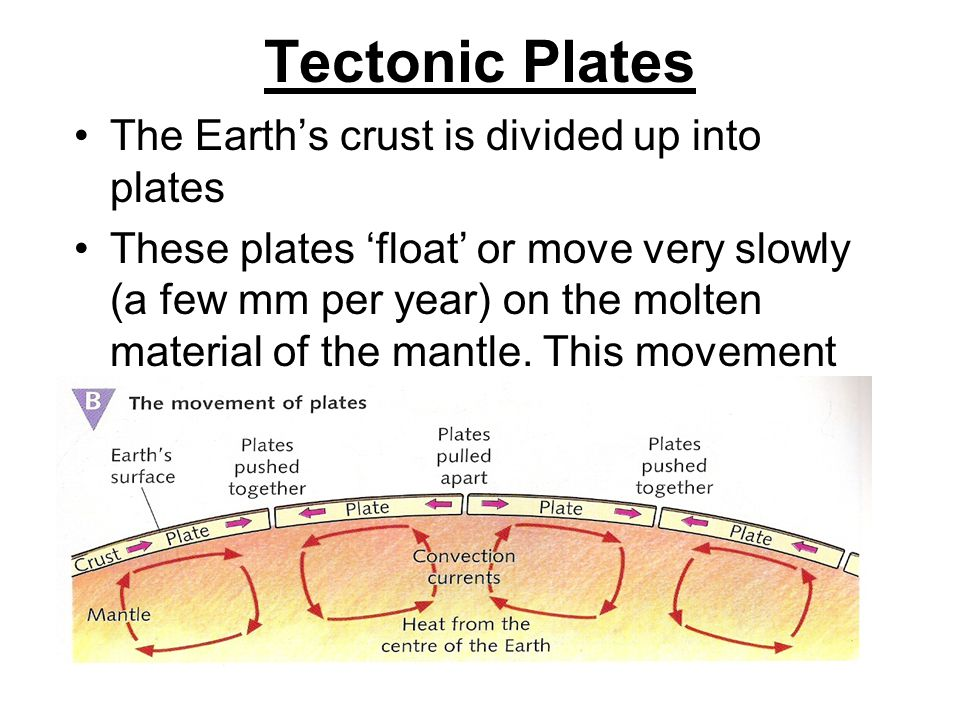 Tectonic Plates The Earth's crust is divided up into plates