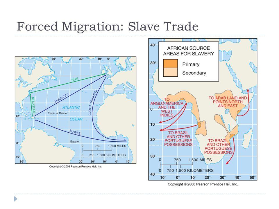 Forced Migration: Slave Trade