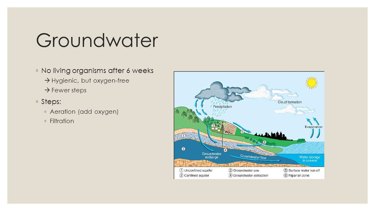 Groundwater No living organisms after 6 weeks Steps: