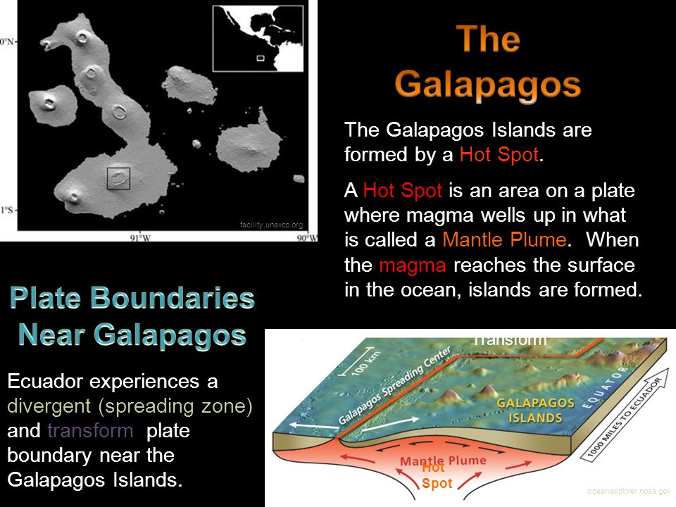 Plate Boundaries Near Galapagos