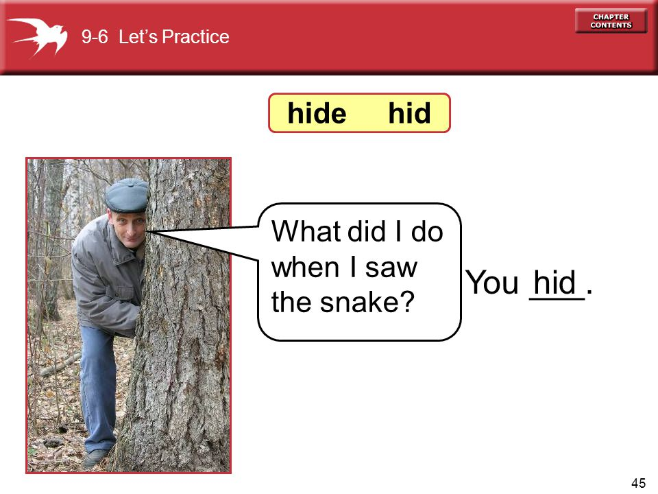 You ___. hid hide hid What did I do when I saw the snake