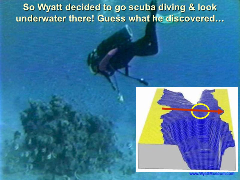 So Wyatt decided to go scuba diving & look underwater there