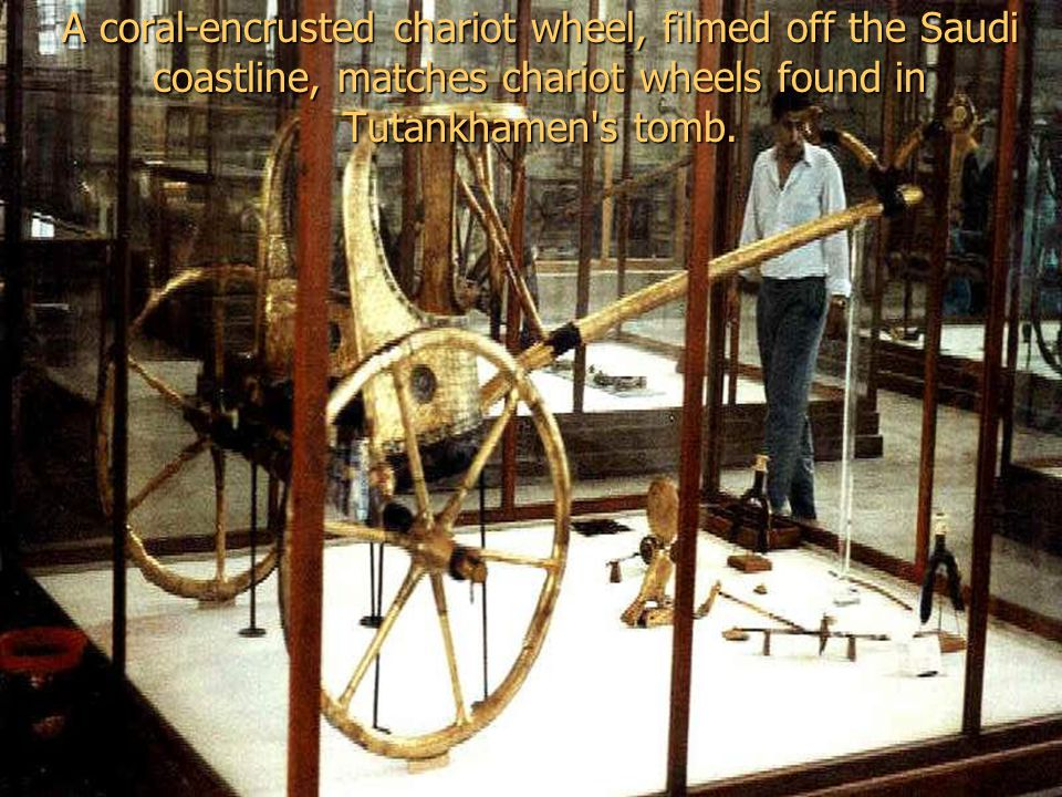A coral-encrusted chariot wheel, filmed off the Saudi coastline, matches chariot wheels found in Tutankhamen s tomb.