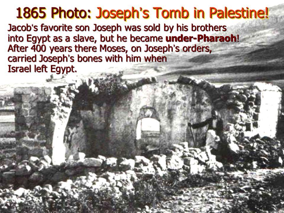 1865 Photo: Joseph's Tomb in Palestine!