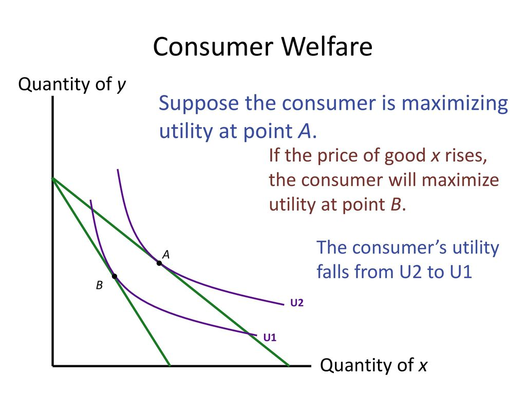 Consumer Welfare Suppose the consumer is maximizing