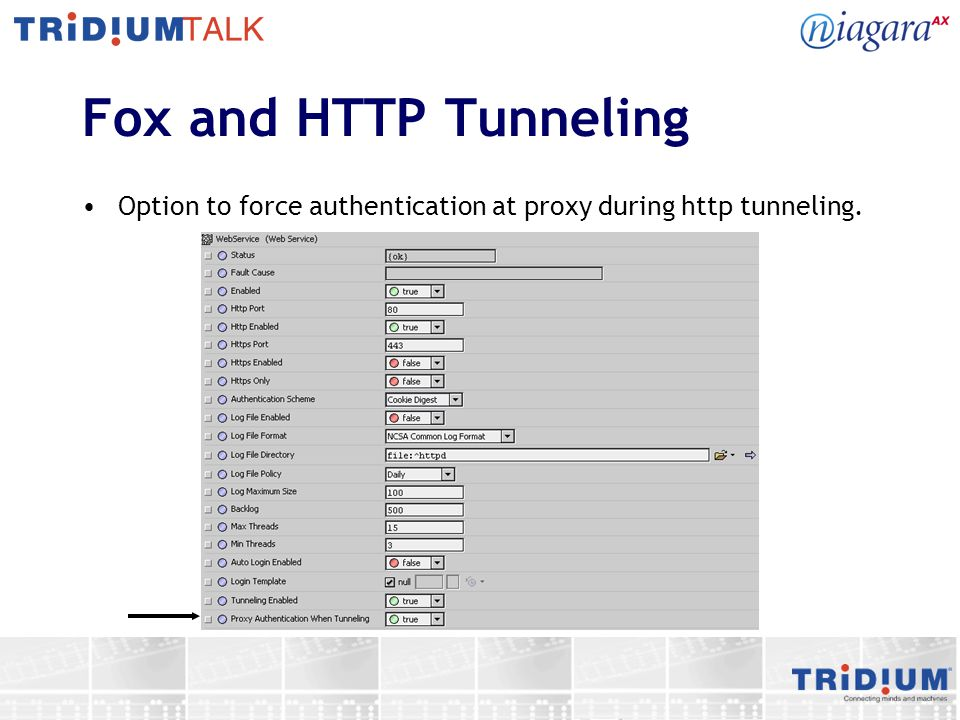 Fox and HTTP Tunneling Option to force authentication at proxy during http tunneling.