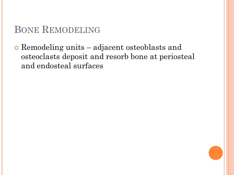 Bone Remodeling Remodeling units – adjacent osteoblasts and osteoclasts deposit and resorb bone at periosteal and endosteal surfaces.