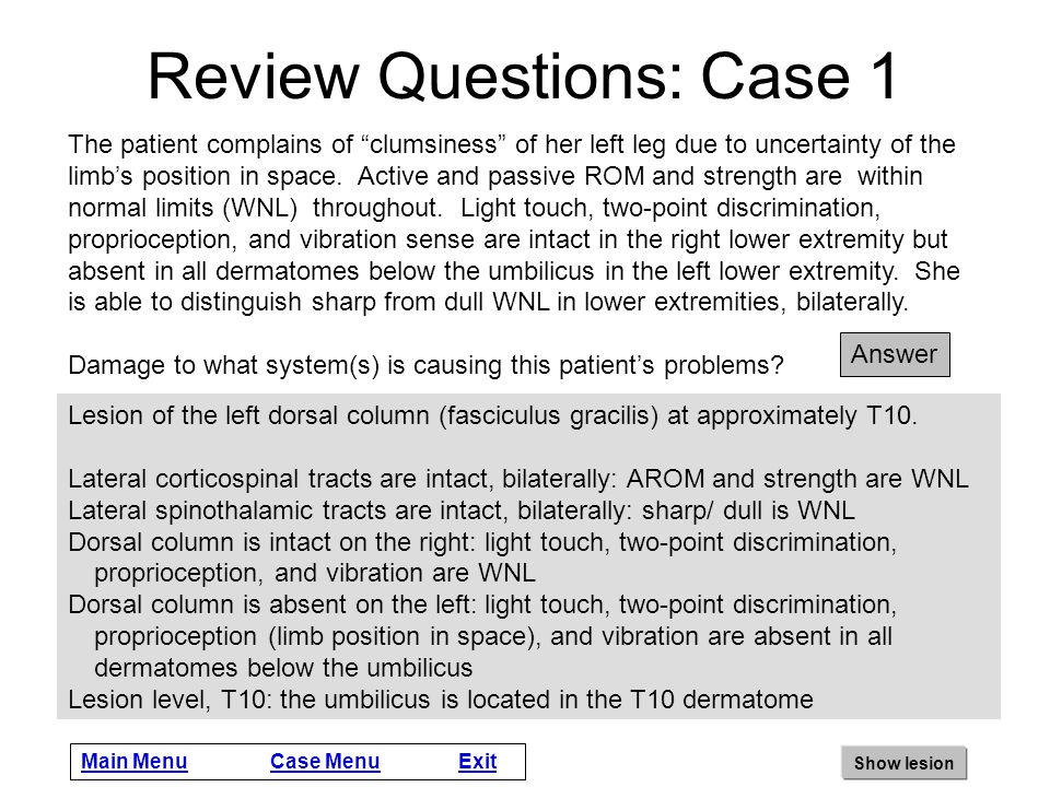 Review Questions: Case 1