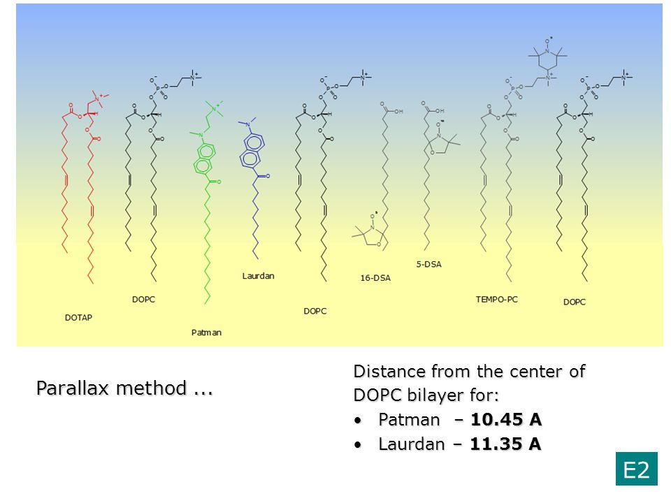 E2 Parallax method ... Distance from the center of DOPC bilayer for: