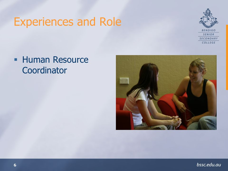 Experiences and Role Human Resource Coordinator
