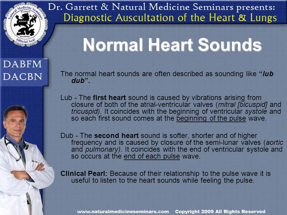 Normal Heart Sounds The normal heart sounds are often described as sounding like lub dub .