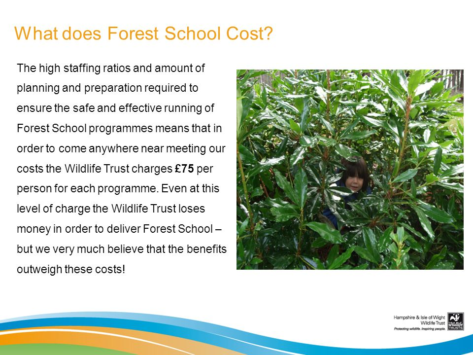 What does Forest School Cost