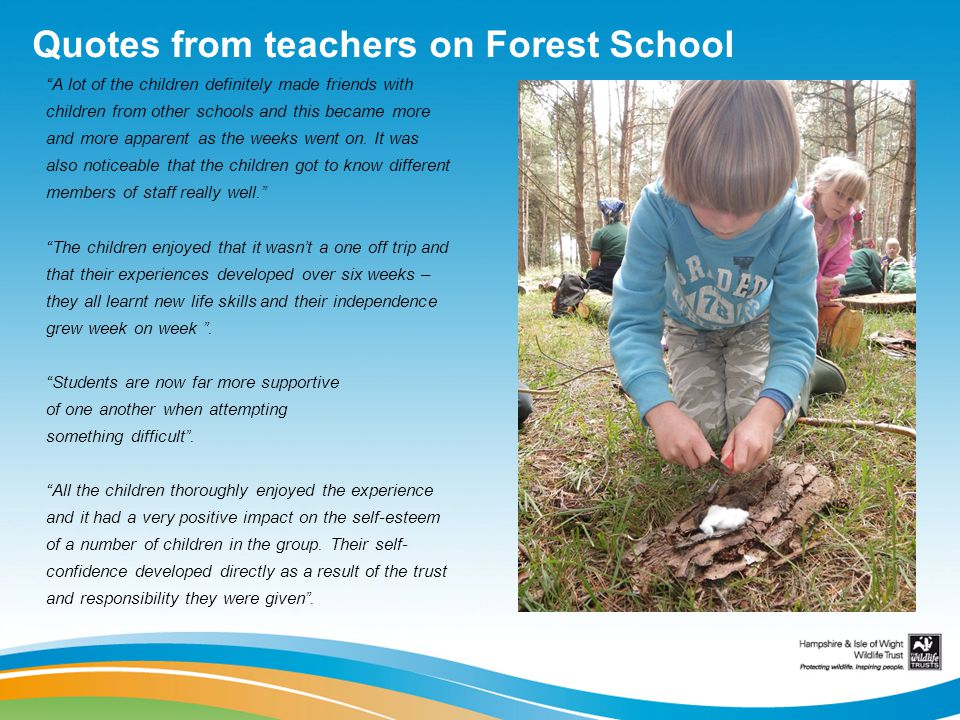 Quotes from teachers on Forest School