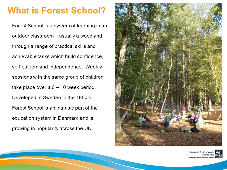 What is Forest School