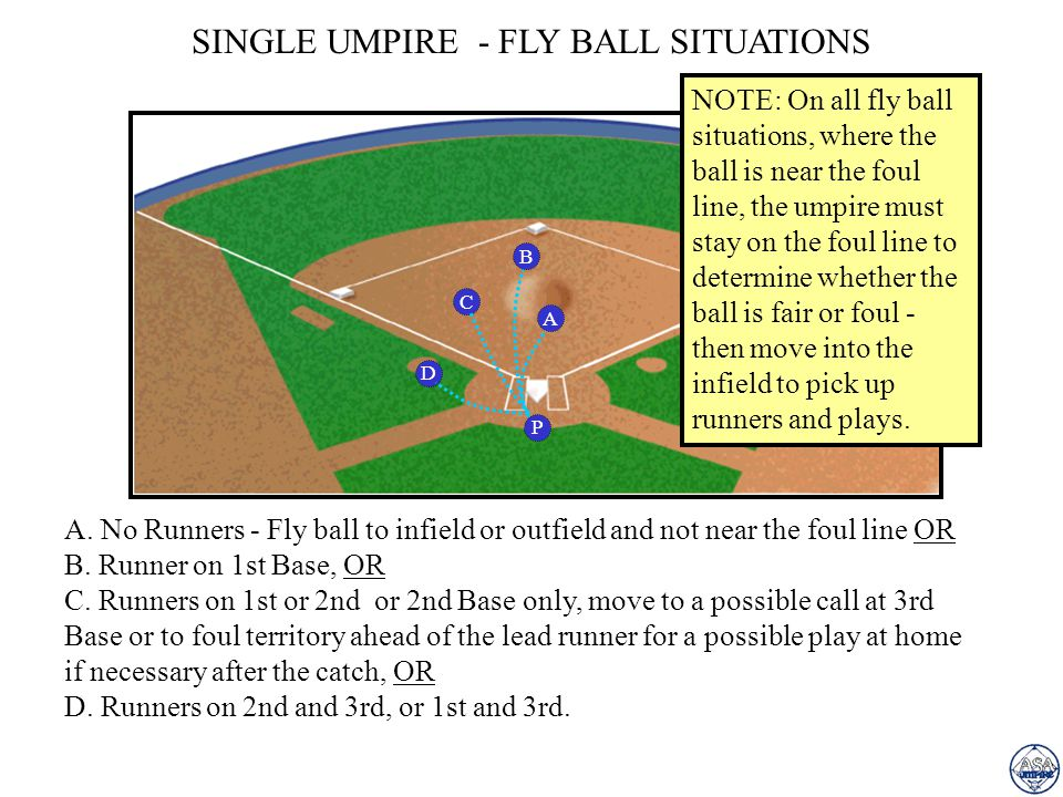 SINGLE UMPIRE - FLY BALL SITUATIONS