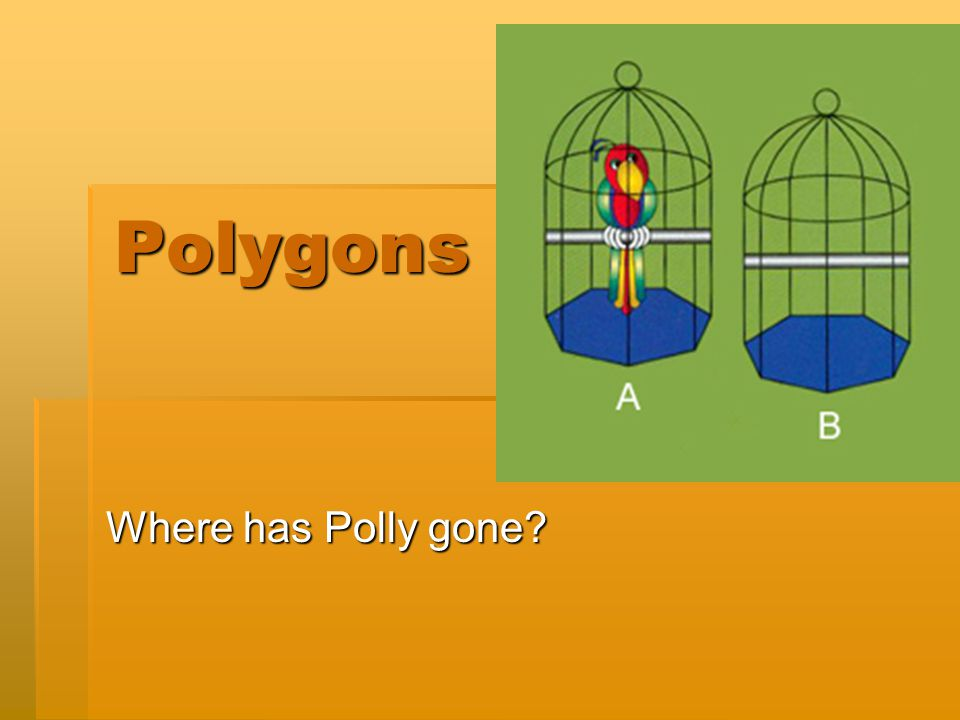 Polygons Where has Polly gone