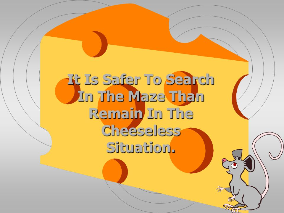 It Is Safer To Search In The Maze Than Remain In The Cheeseless Situation.