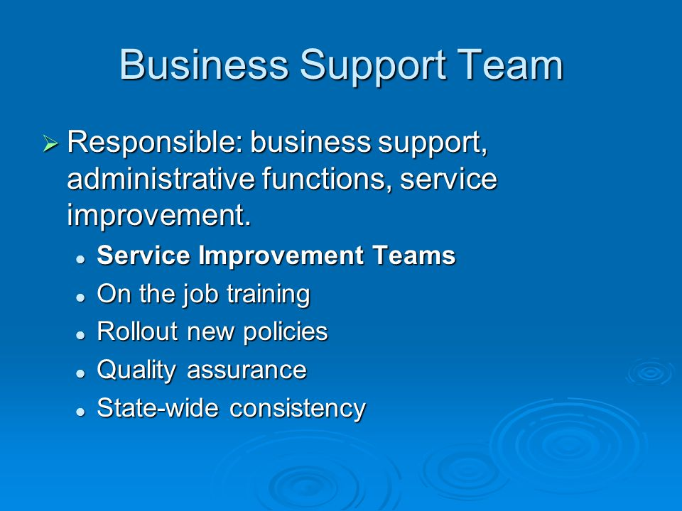 Business Support Team Responsible: business support, administrative functions, service improvement.