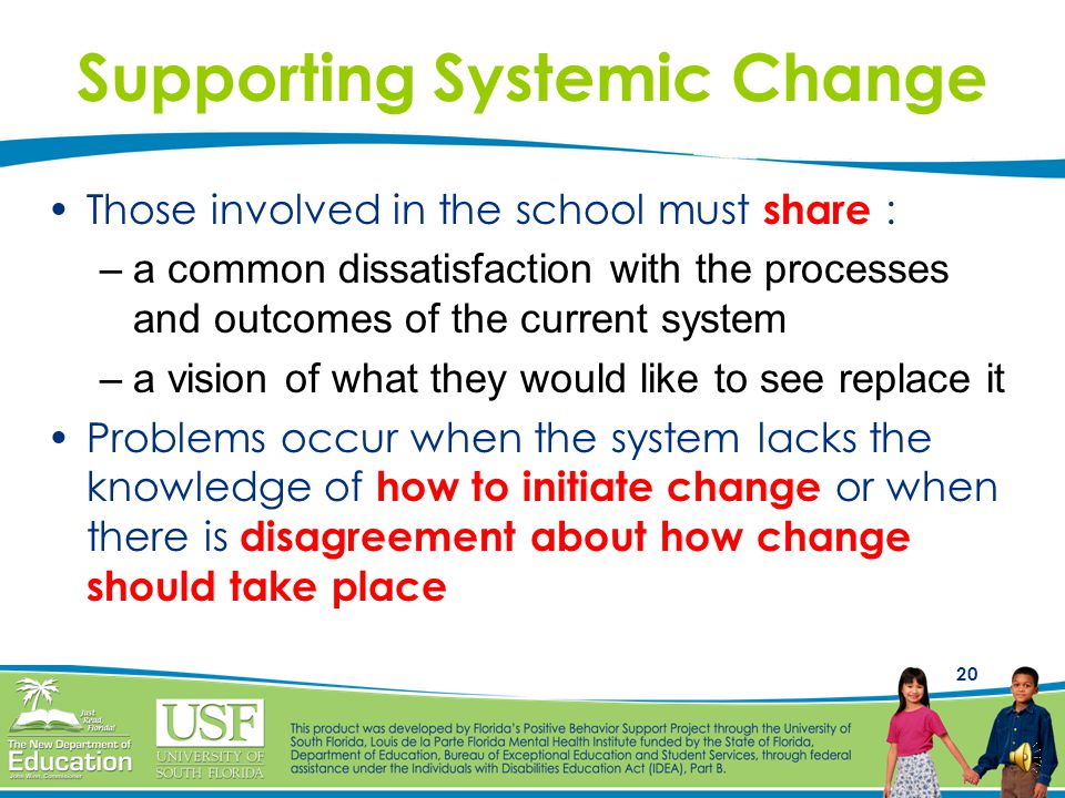 Supporting Systemic Change