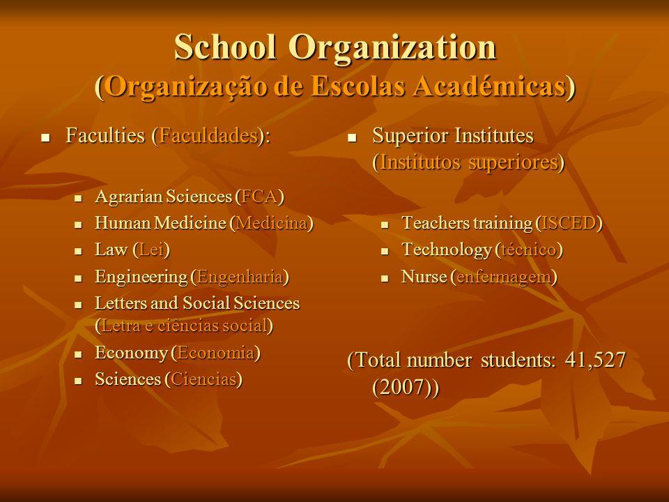 School Organization (Organização de Escolas Académicas)