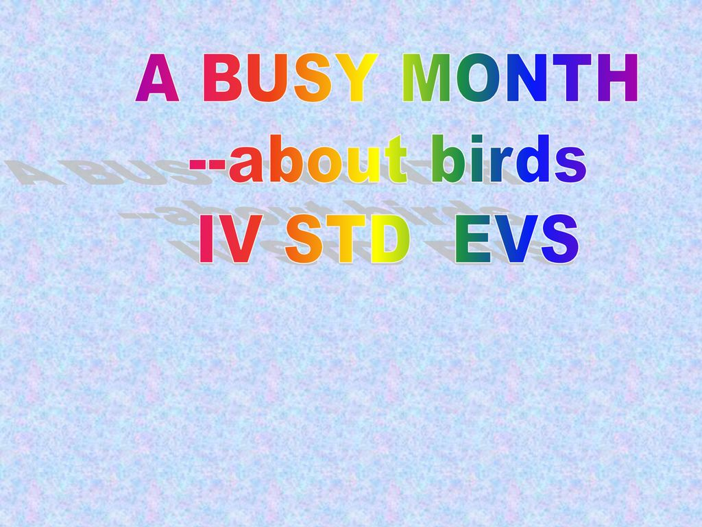 A BUSY MONTH --about birds IV STD EVS