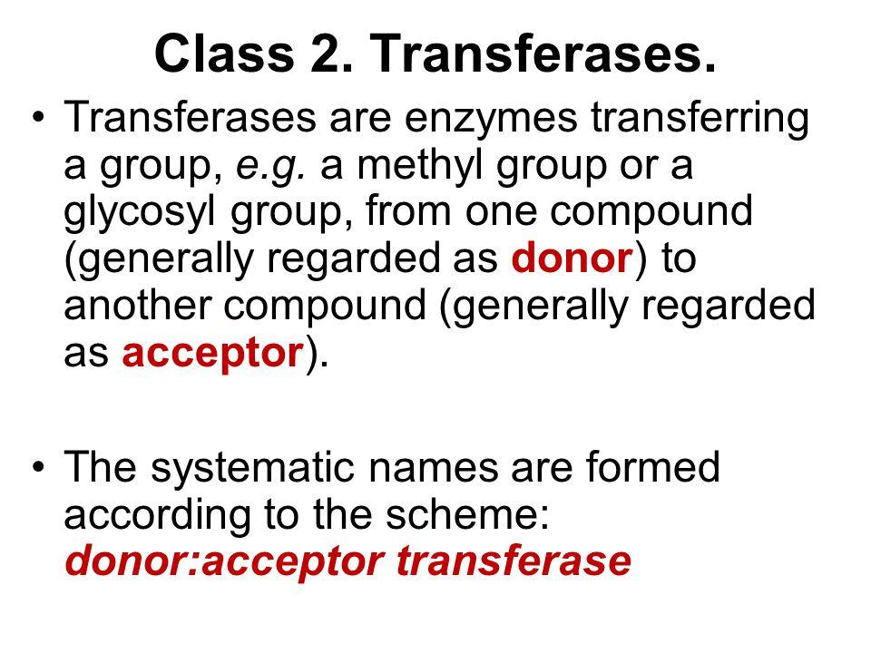 Class 2. Transferases.