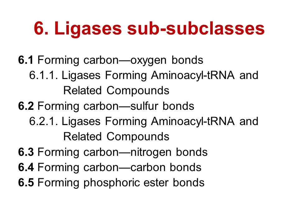 6. Ligases sub-subclasses