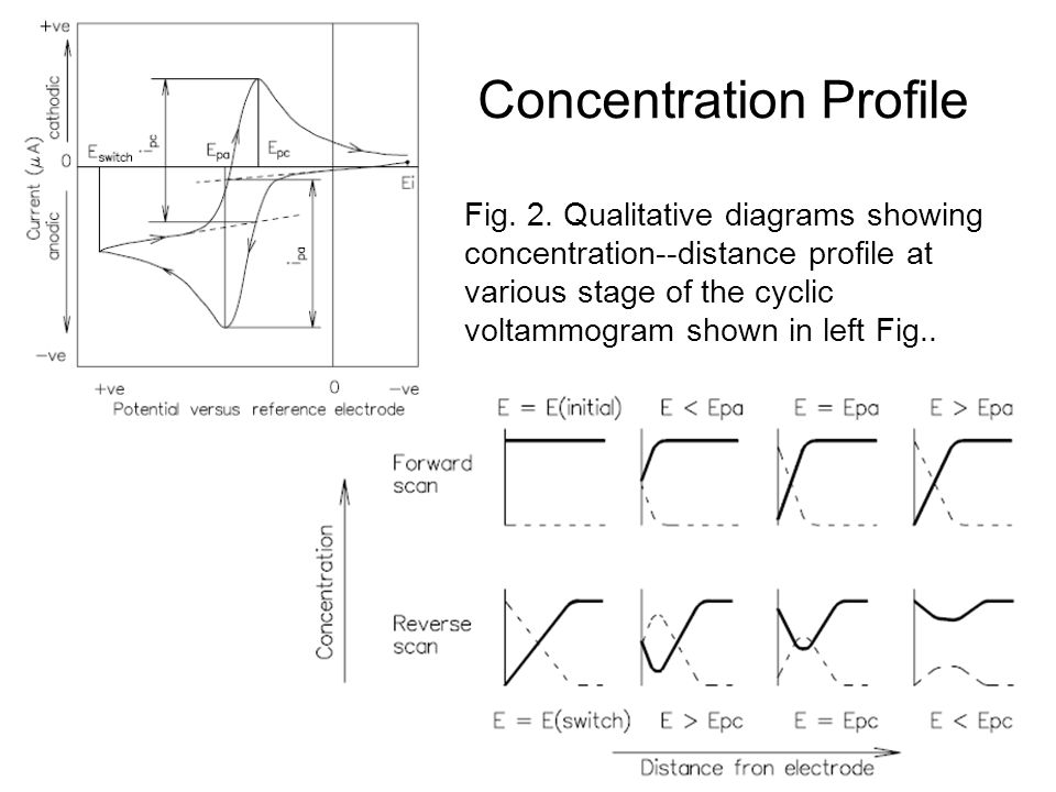 Concentration Profile