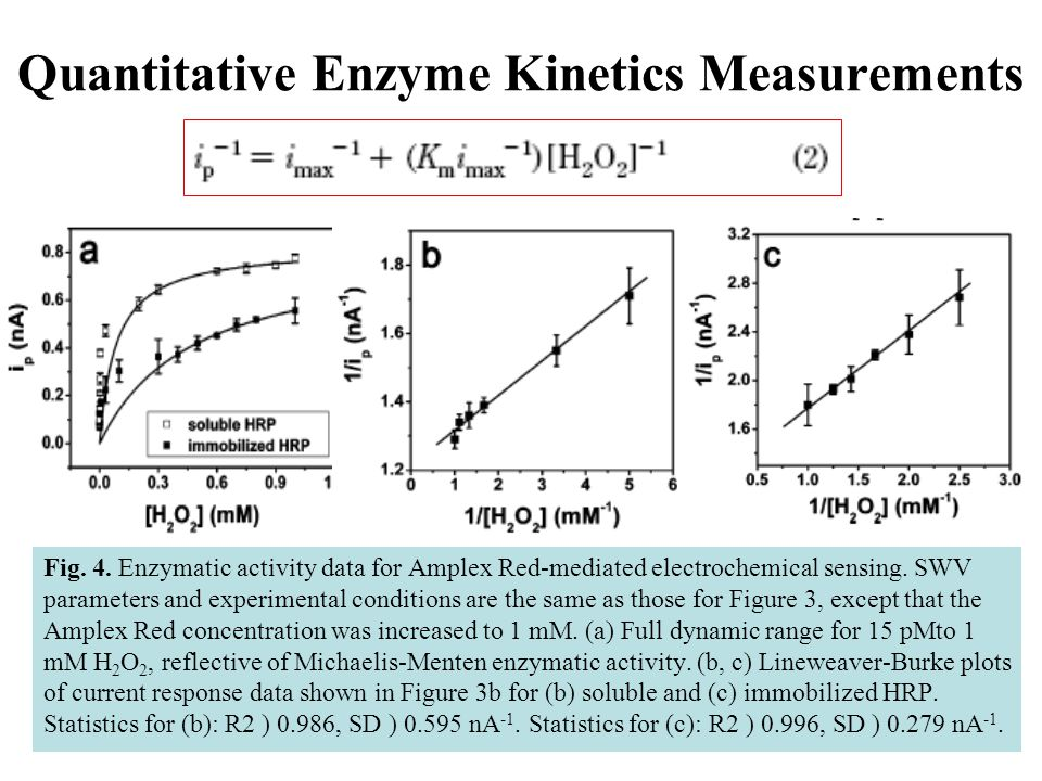 Quantitative Enzyme Kinetics Measurements